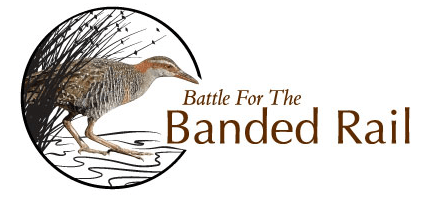 Battle for the Banded Rail logo